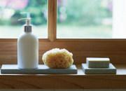 soil 珪藻土のトレイ 卒業 就職のお祝い 日本いいもの屋